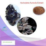 Extrait cryptogamique noir naturel de 100% (polysaccharides 10%-40%) --Fournisseur de Nutramax