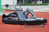 Hand Start Adult Racing Kart met 200cc 4stroke Go-kart Engines