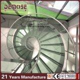 De luim Gelamineerde CirkelTrap van de Loopvlakken van het Glas (dms-1039)