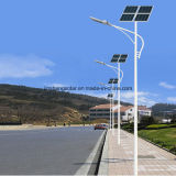 5 Jahre Warranty Energie-Einsparung 60W LED Solar Power Street Light mit Cer Approved (JINSHANG SOLAR)