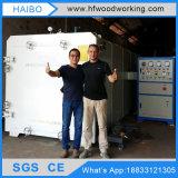 Machine de séchage de plaques d'étage de bois de construction de Dx-10.0III-Dx/chambre plus sèche pour le travail du bois