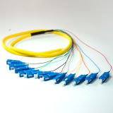 Tresse de fibre optique du SM SC/PC 12f de qualité