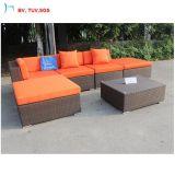 C-Nuovo sofà esterno moderno della casa del rattan del giardino della mobilia