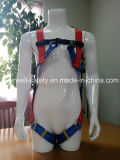 Cablaggio pieno del corpo, cavo di sicurezza, cintura di sicurezza, cinghia di sicurezza, tessitura con il modo fisso del Due-Punto (EW0312H)