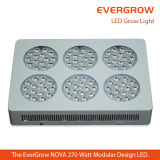 Iluminación manufacturada barata de la planta de China LED