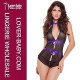 De Sexy die Lingerie van de manier voor Jaar 2013 wordt geplaatst