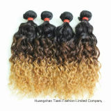 "24 ""人間のVirgin Hair Extension Ombre 3tone Wave Hair"