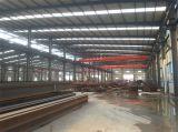 Entrepôt en acier de structure de bâti de l'espace de grande envergure