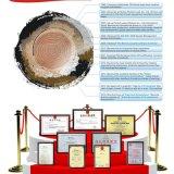 De professionele Machine van de Gravure van de Laser van de Ring van de Exporteur voor Metaal