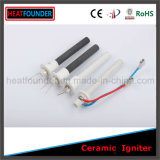 Dispositivo de ignição cerâmico de Heatfounder 50-300W