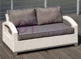 insieme del sofà del rattan di ricezione del randello del giardino di riunione del tè by-434