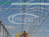 Multi-Span Film Economic Greenhouse per idroponico