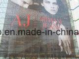 Im Freien materieller Fenster-Film-Einweganblick (140mic Freigabepapier des Filmes 150g)