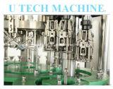 Машина делать вина стеклянной бутылки in-1 Utech 3 (серии BCGF)