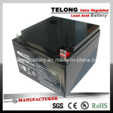 세륨 & UL Certificate를 가진 12V24ah Solar Power Battery