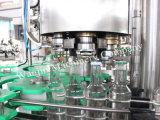 ペットびんビール洗浄、一体鋳造機械(プラスチックびん) 31でキャップする詰物
