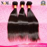 도매 고품질 Virgin 머리 브라질 또는 Malaysian 페루 또는 인도 직모 연장