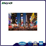 PVC Laminated Backlit Banner Printing Advertizing Material (500dx500d 18X12 510g)