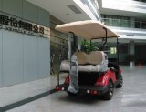 2 People (EQ9022)のためのDongfeng Electric Golf Car