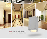 3 Years Warranty를 가진 옥외 Ceiling Light Aluminum Ceiling Lamp