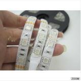 Gehele Verkoop het Witte LEIDENE van de Lage Prijs 12V 300 LEDs 5050 Licht van de Strook