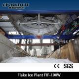Type de récipient d'eau de mer (FIV-50K) machine de glace d'éclaille
