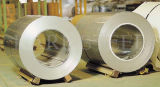 Gt Material Induction 0.8%Cu及び0.8%Ni Stainless Steel Coil