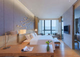 فندق أثاث لازم 5 نجم خشبيّة جدار تلفزيون [بنلّينغ] تصميم متأخّر