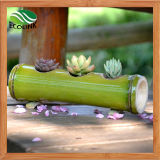 Potenciômetro de flor de bambu Handmade do potenciômetro Succulent da planta