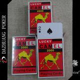Tarjetas que juegan del camello 2000 afortunado de la alta calidad