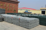 Gabion Mesh mit Highquality Made in China