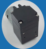1.1L/M Selbst-Priming Electric Diaphragm Brush Low Voltage Water Pump