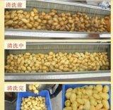 Machine à laver électrique recommandée de fruit de machine de nettoyage de légumes d'acier inoxydable