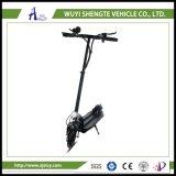 電気スクーターを折っている10inch 2車輪の大人