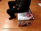 Складывая устроитель коробки хранения