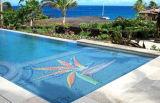 Het decoratieve Mozaïek van het Glas voor Zwembad