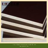 12mm Hardwood Core Film Faced Plywood