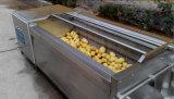 Tipo equipamento vegetal da escova da eficiência elevada da limpeza da fruta
