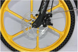 vélos se pliants de bâti d'alliage d'aluminium de 36V 250W Starwheel (JSL039X48-1)