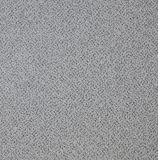 Beste Tegel 600mm X 600mm van het Tapijt van de Vloer van de Prijs Vinyl