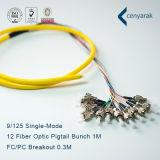 De alta calidad Sm FC / PC 12f de fibra óptica Pigtail