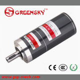 12/24V C.C. Brushless Gear Motor
