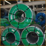 ASTM 304 316L Edelstahl Sheet Coil in Large Stock