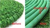Le meilleur tuyau de jardin extensible vert pomme de vente avec les agrafes rapides
