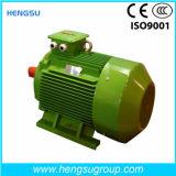Электрический двигатель индукции AC Ye3 18.5kw-6p трехфазный асинхронный Squirrel-Cage для водяной помпы, компрессора воздуха