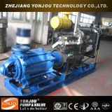 D Type Multistage Centrifugal Pump con Diesel Engine/Irrigation Application