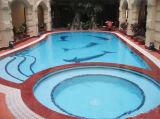Mosaico de cristal decorativo para la piscina