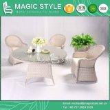 藤の椅子の庭の家具P.Eの柳細工の食事の一定の椅子のダイニングテーブルの柳細工のダイニングテーブルの円卓会議