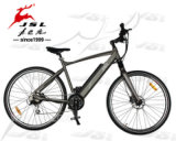 Bicicleta eléctrica vendedora caliente de la montura 250W 36V de MTB (JSL037G)