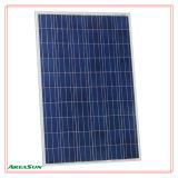 250W-270W 60 cellules Poly Solar Panels pour système hors-grille / sur grille / pompe solaire